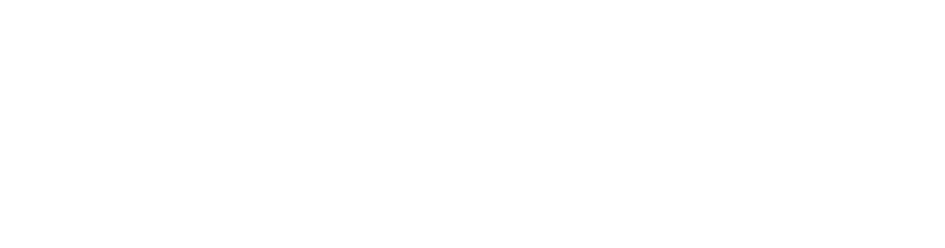 logo_digital_white_access